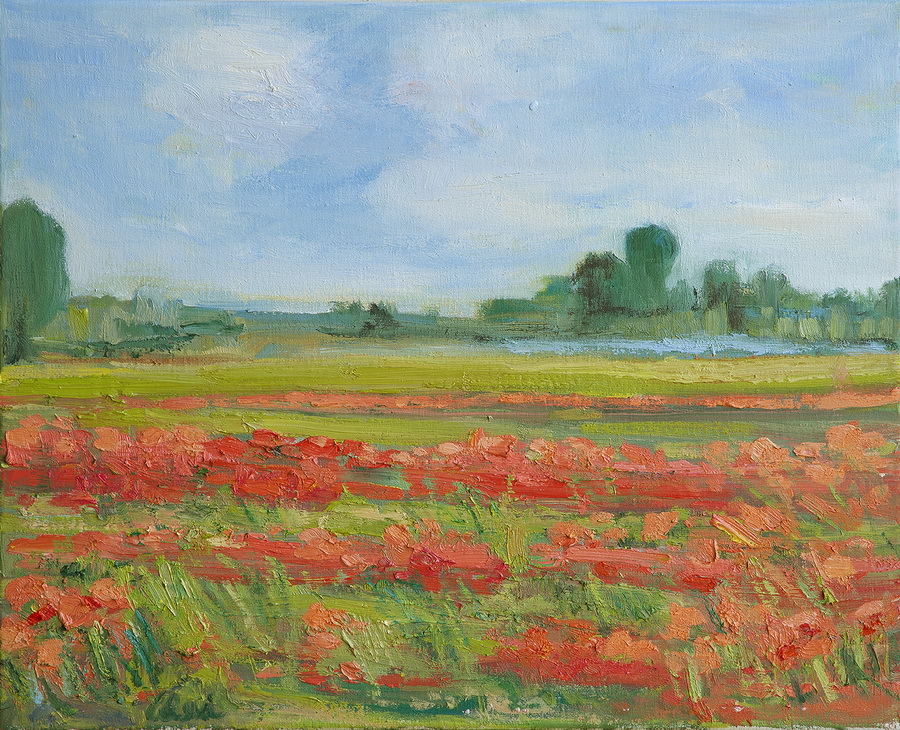 Living Coral Poppy Field 20x20